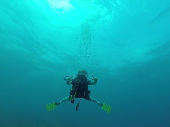 Пьяченца, Белиз: Diving