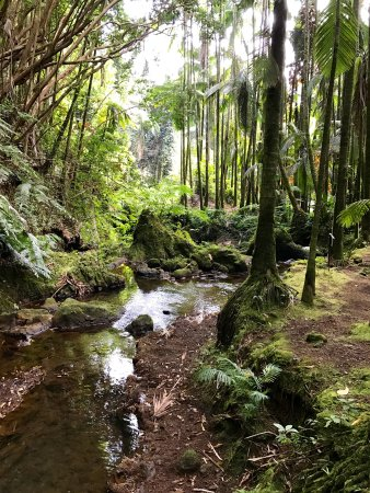 Papaikou, HI: A very peaceful place