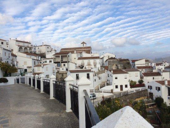 Cartajima照片