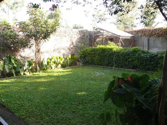 Christina House: Little yard in the back where you can see Mt Meru on a clear day
