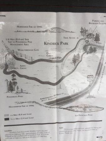Kendrick Park Nature Trail