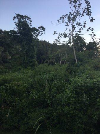 Belmopan, Belize: photo3.jpg