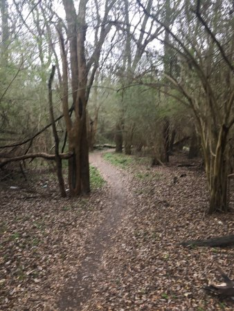 Harry Moss Park