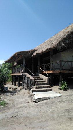 Roika Tarangire Tented Lodge Foto