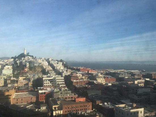 Hilton San Francisco Financial District : Bay view with Coit tower. They just need to clean the outside window!