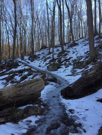 Bear Mountain, Нью-Йорк: photo7.jpg