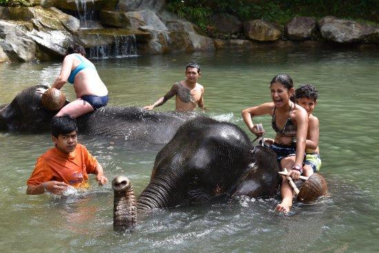 Phang Nga, Thailand: Pure excitement