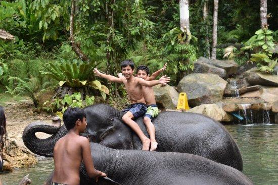 Phang Nga, Thailand: My boys, loving it!
