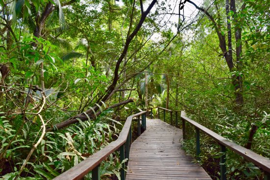 La Chosa del Manglar : Beautiful landscaped paths make you feel very remote.