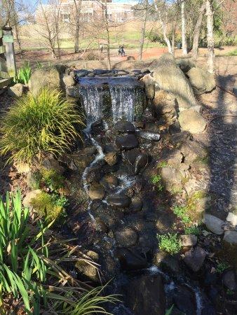 North Augusta, Karolina Południowa: Brick Pond Park