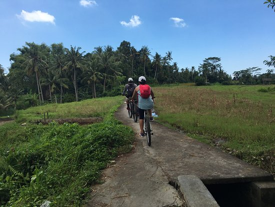 Bali Hai Bike Tours: photo7.jpg