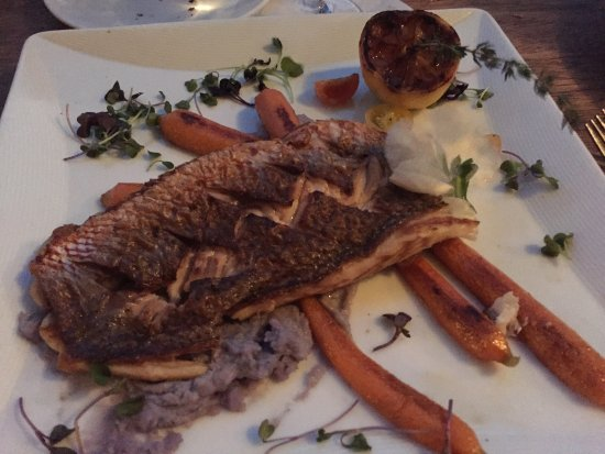 Sunny Isles Beach, FL: Seared red snapper with mashed blue potatoes and buttered baby carrots