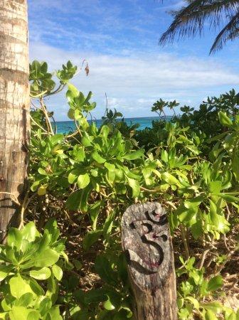 Sivananda Ashram Yoga Retreat: On a quiet top world beach