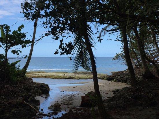 Puerto Viejo Beach: photo4.jpg