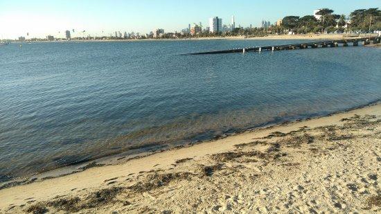เซนต์กิลดา, ออสเตรเลีย: 海灘景緻