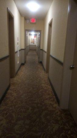 AAE Miami Beach Lombardy Hotel Aufnahme