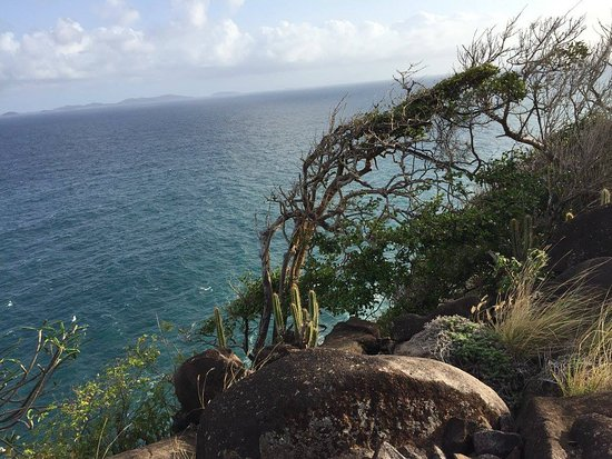 Mount Pleasant, Bequia: View from the bluff we hiked to. We found a wild goat here