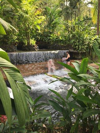 Tabacon Thermal Resort & Spa: photo2.jpg