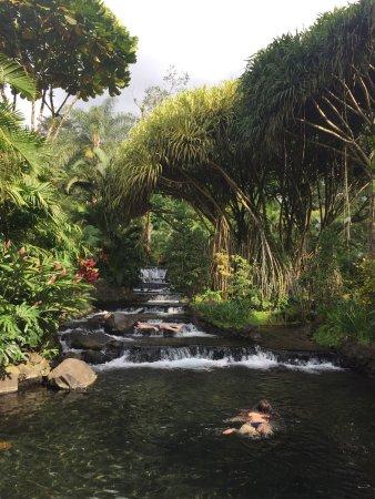 Tabacon Thermal Resort & Spa: photo3.jpg
