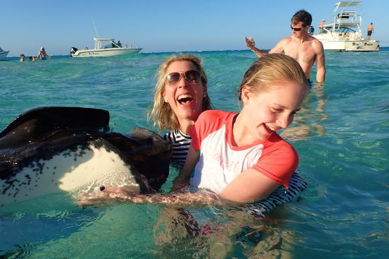 East End, Grand Cayman: The Stingrays are always having a laugh with the visitors