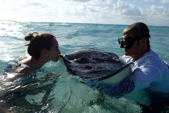 East End, Grand Cayman: 7 Years good luck when you Kiss a Stingray :)