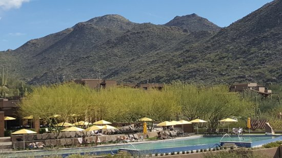 The Ritz-Carlton Dove Mountain: infinite pool