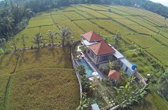 Puri Landu Ubud Luxury Villas