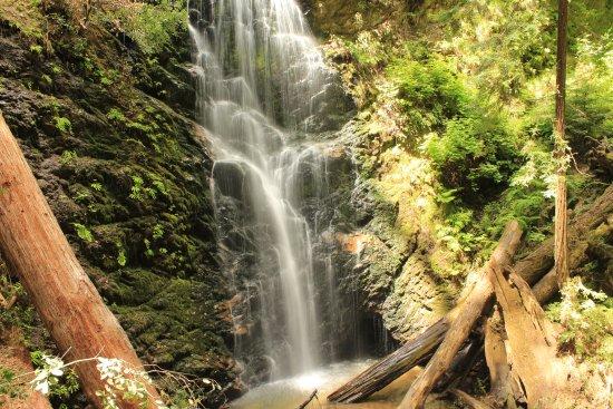 Boulder Creek, CA: Gorgeous waterfall!