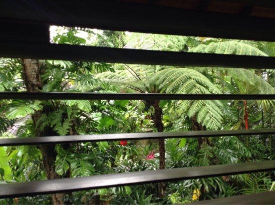 Bidadari Private Villas & Retreat: photo2.jpg