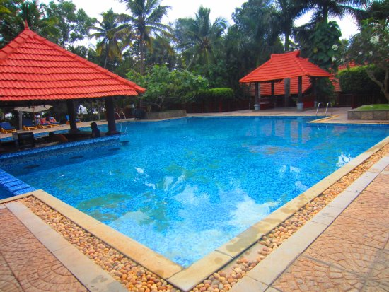 Poovar, India: Swimming Pool