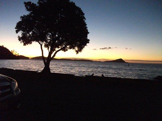 Coromandel Peninsula Photo