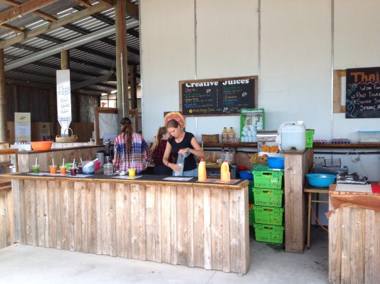 Kerikeri, New Zealand: Fresh juices; yum!