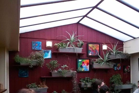 Avranches, France: La paroi végétalisée, la meilleure partie du décor du Tripot