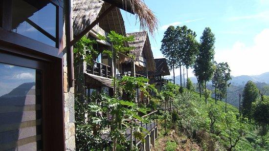 98 Acres Resort: Chalet rooms