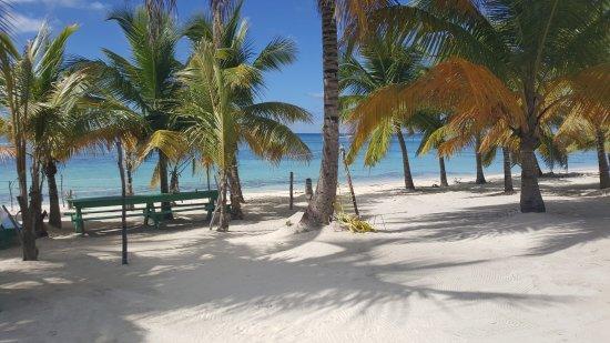 Bayahibe, Δομινικανή Δημοκρατία: île de saona