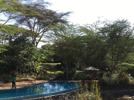 Wildebeest Eco Camp: View from dining terrace