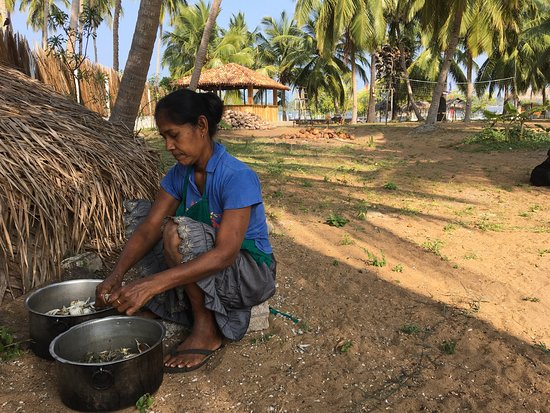 Kalpitiya, Sri Lanka: photo0.jpg