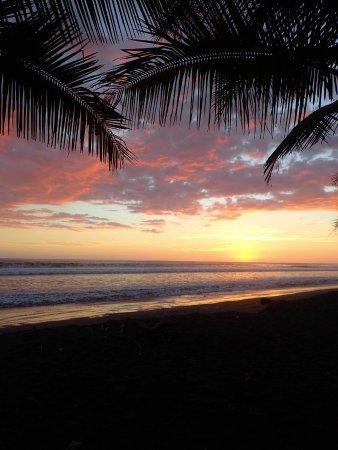 Playa Matapalo Photo