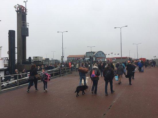 Nes, The Netherlands: photo1.jpg