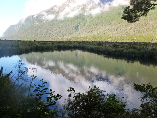 Fiordland National Park (Te Wahipounamu): Crystal clear lake