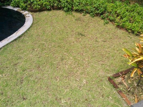 """Abi Bali Resort & Villa: Der """"tropische Garten"""" Marma 3"""