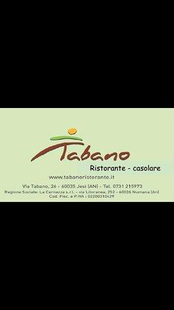 Jesi, Italia: Il nostro logo