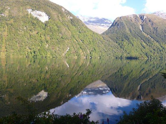 Fiordland National Park, Nova Zelândia: Mirror like