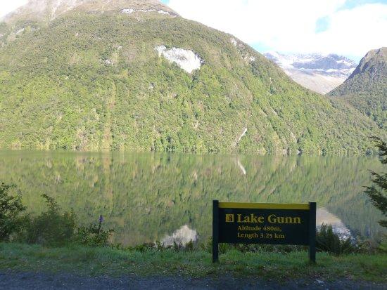 Fiordland National Park, Nova Zelândia: Lake Gunn