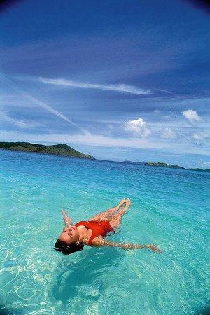 just another day in americas paradise us virgin islands usvi rh tripadvisor com