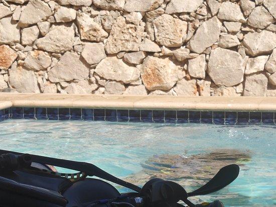 Kralendijk, Bonaire: Hier is nog weinig te zien