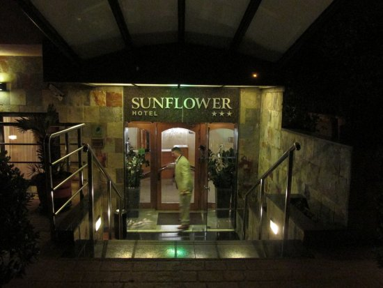 Sunflower Hotel: entrance