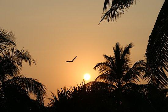 Zdjęcie Lhaviyani Atoll