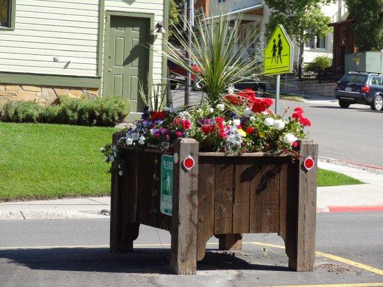Telluride, CO: Клумбы с цветами на проезжей части