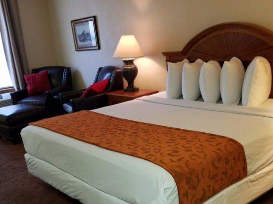 Hospitality Inn: King Size studio suite